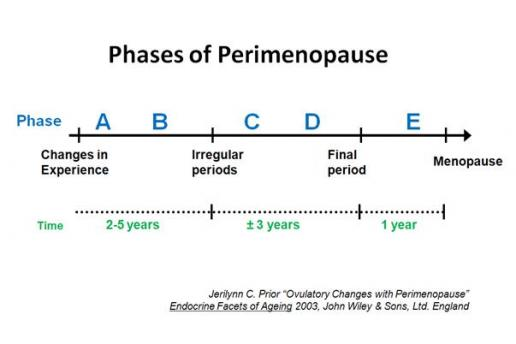 The five phases of perimenopause